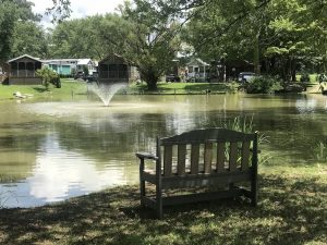 Bench Upper Pond View - small